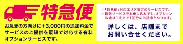 特急便:3000円の追加料金で最短でサービスをご提供!